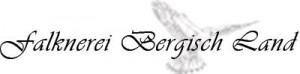 Bergl